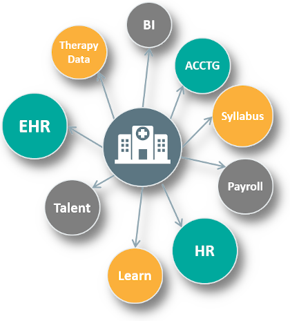 SIDIS Health Systems Diagram